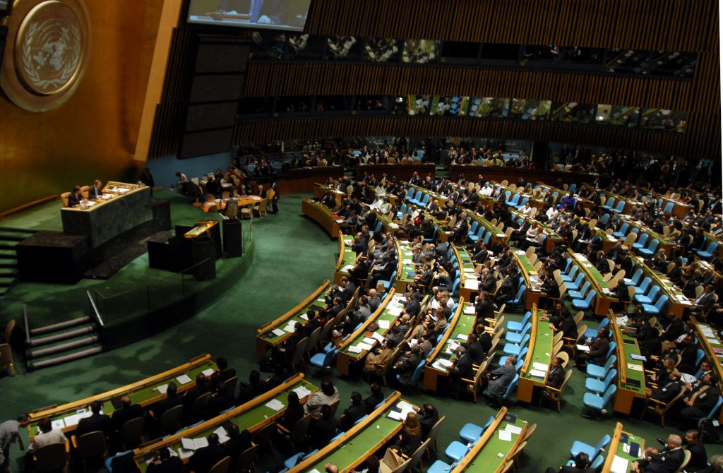 UN_meeting_on_environment_at_General_Assembly